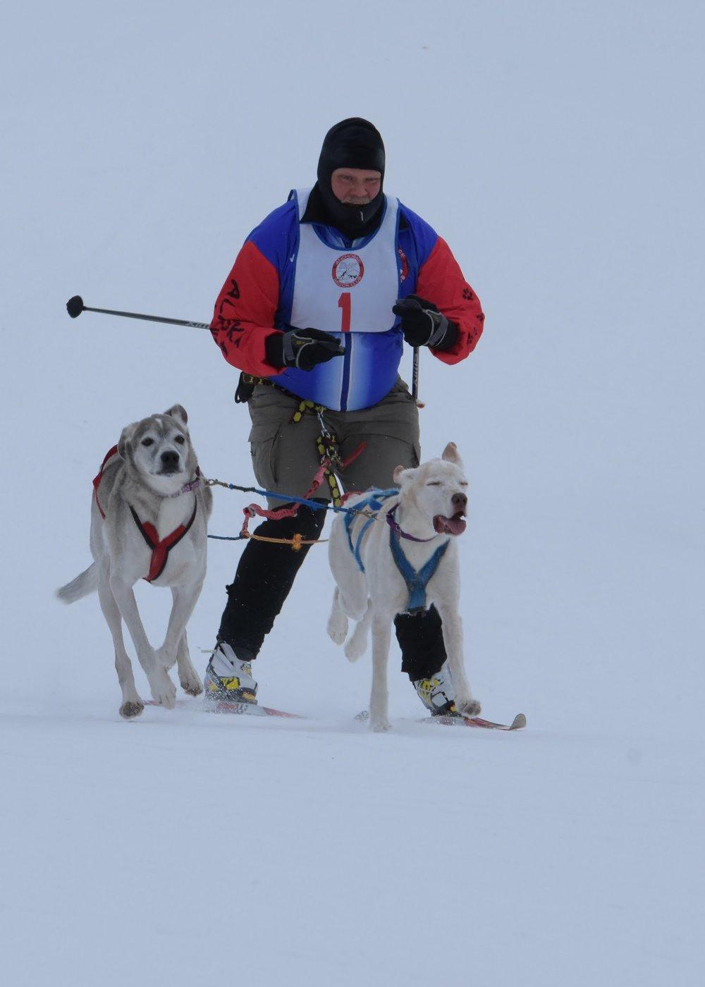 Mike Malvick with Taos and Hazel
