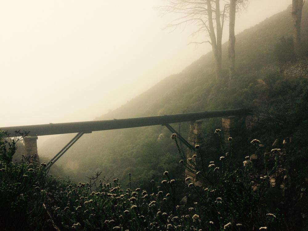 """""""Words build bridges to unexplored regions"""""""