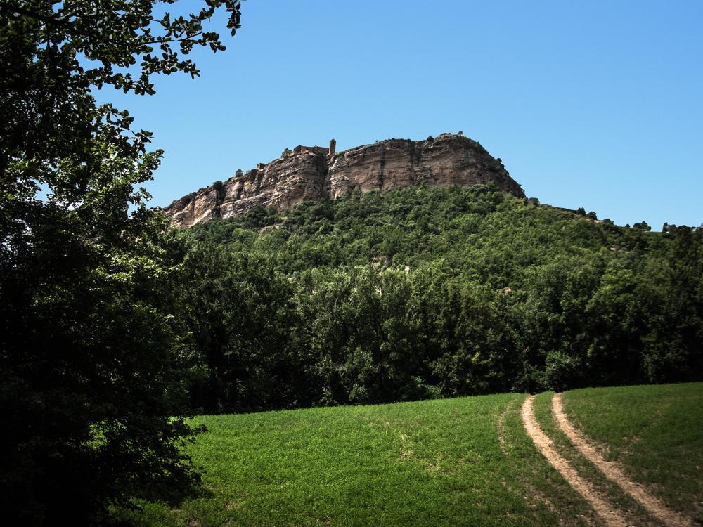 ammended hillside-x.jpg