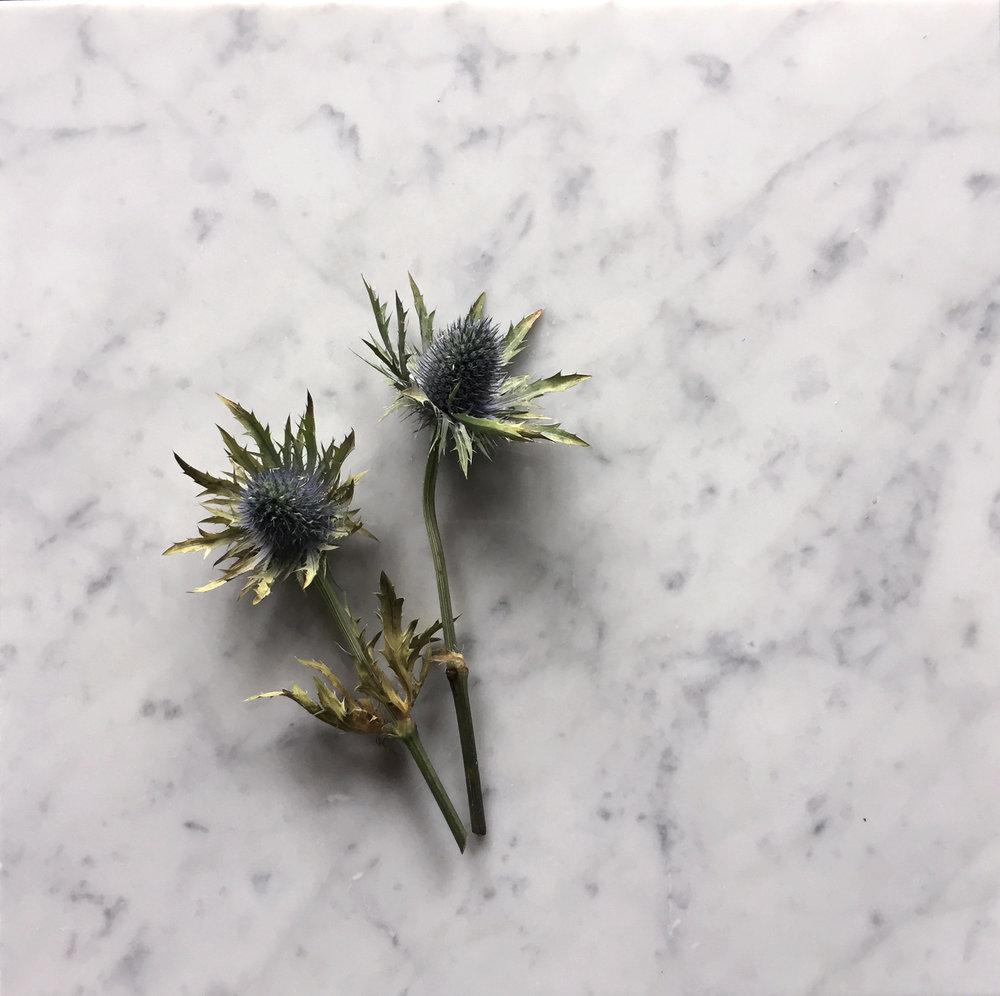 Marmor-+-blomma.jpg