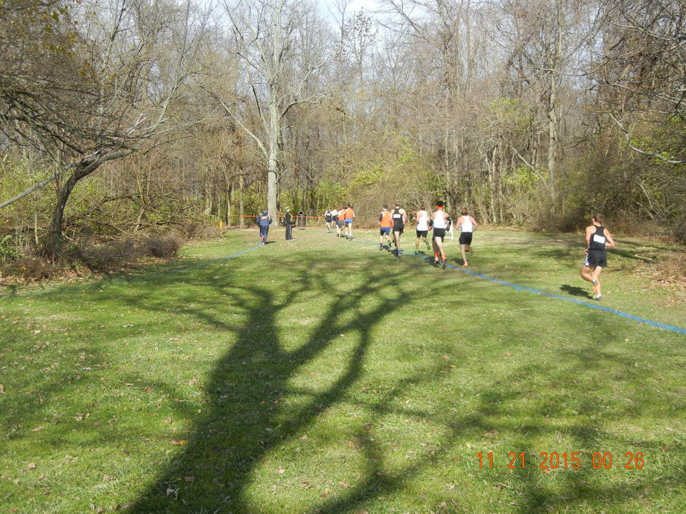 Heading into the woods at the 1.5-mile mark