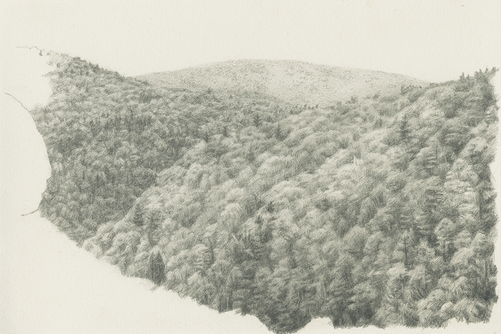 Kaaterskill Clove , 2008 Graphite on paper 6 x 9 inches Signed at lower left: NHiltner '08