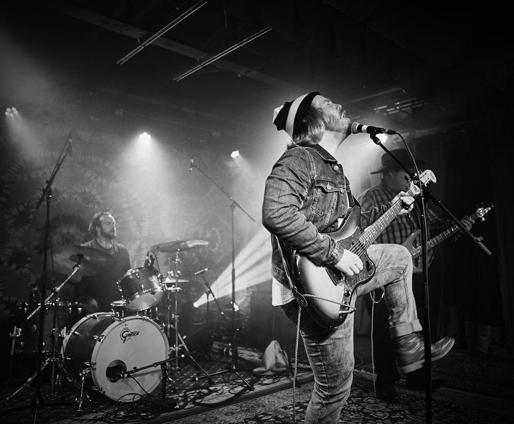 Photo: Matt Twomey