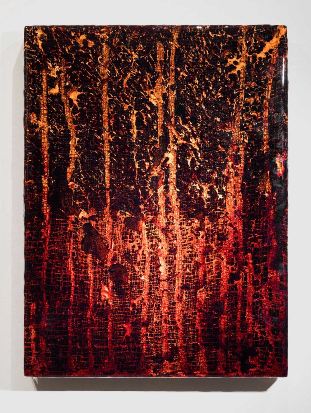"ROZE-HF2, 2014 24 x 18 x 3"" blood, copper, gauze, preserved on plexiglass, UV resin"