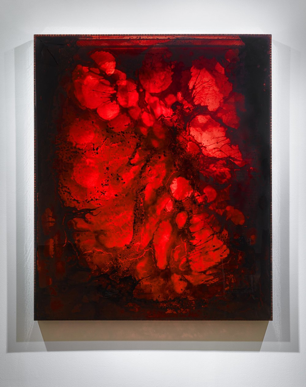 "LIFE FORCE 2012-2, 2012 72 x 60 x 3"" blood, copper, preserved on plexiglass, UV resin"