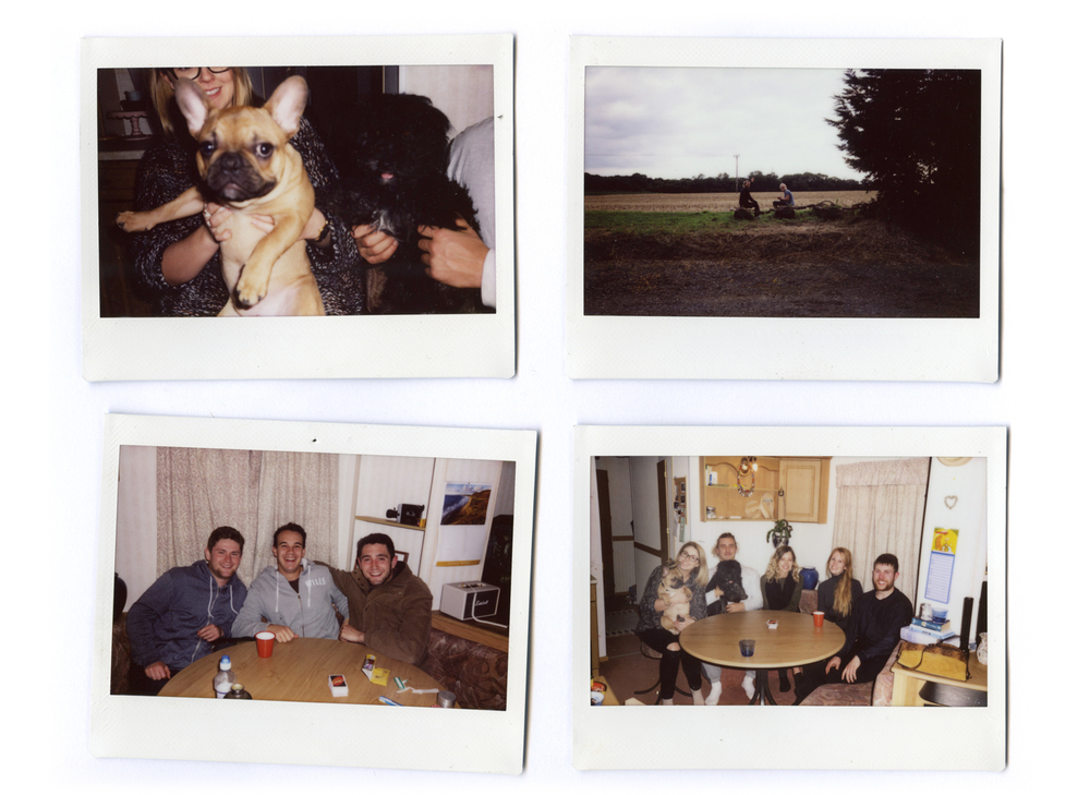 Puppies enjoying the caravan, the 'front garden' and cosy nights of Uno.