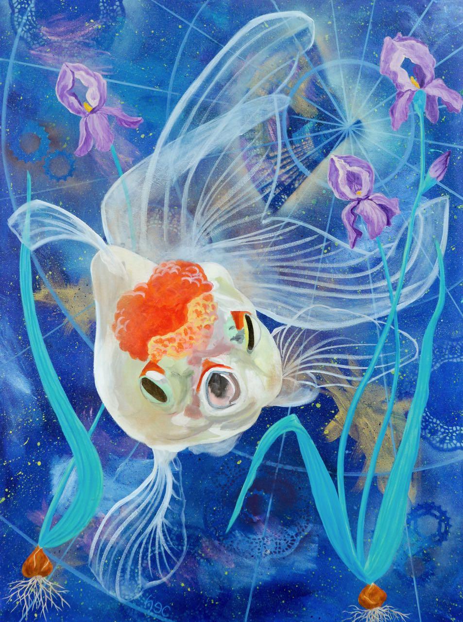 HCfish.jpg