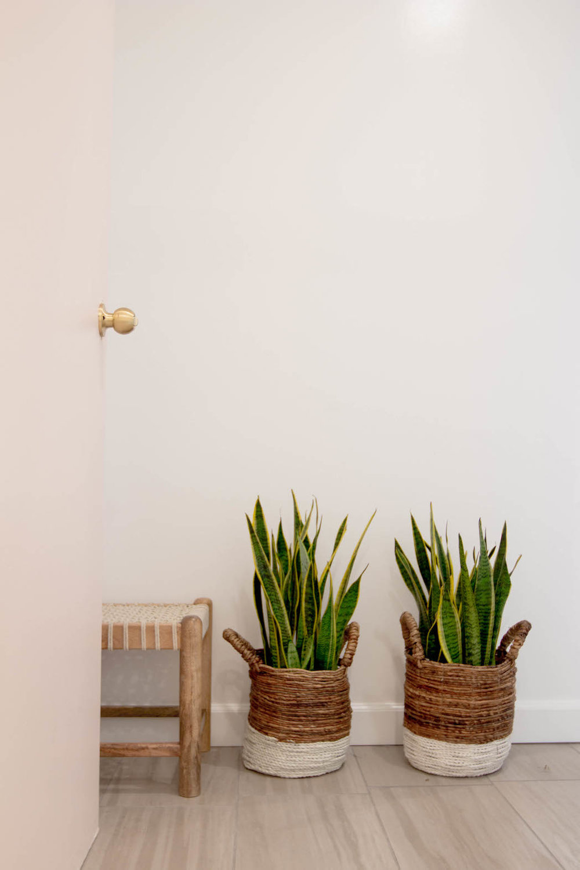 the-cosmo-studio-dolkii-plant-styling-shaiyanne-dar-11.jpg
