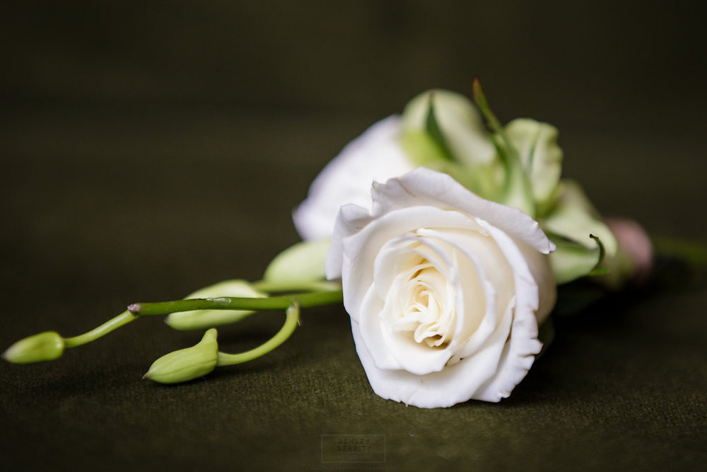 04 Philadelphia Wedding Intimate Wedding Grooms Boutonniere Rittenhouse Hotel Aribella Events.jpg