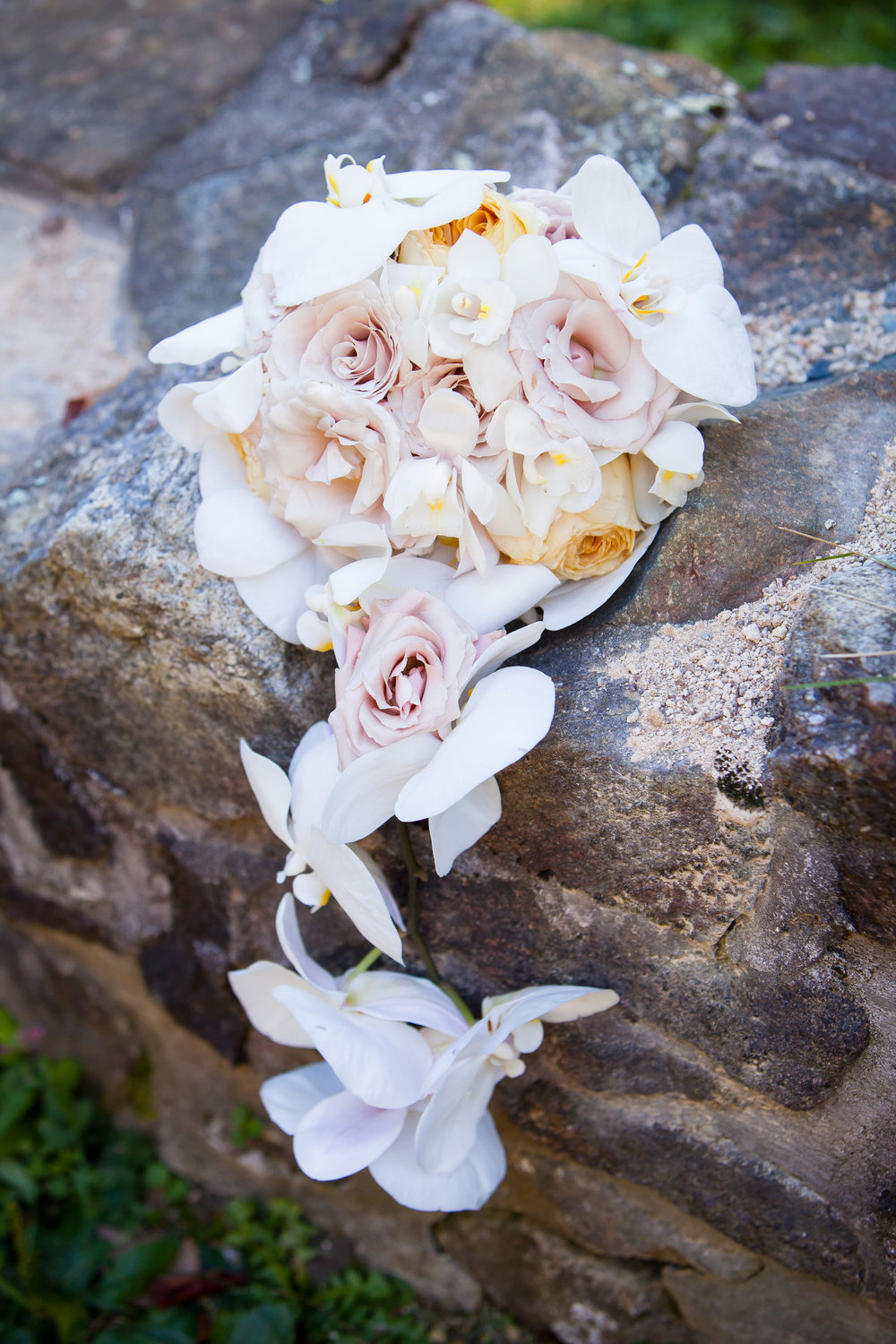 10 Philadelphia Wedding Flowers Bride Bouquet Orchid Rose Historic Yellow Springs.jpg