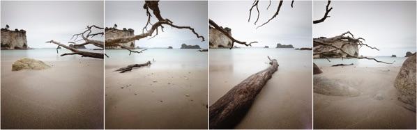 Elements of Landscape, Stingray Bay, New Zealand
