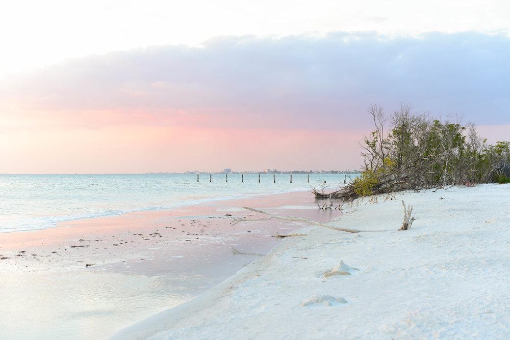 Fort Myers 09.jpg