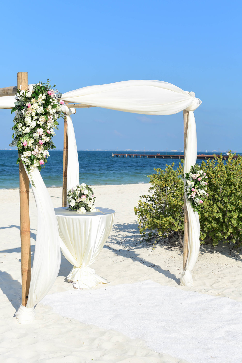 Will Allyson Wedding Dreams Playa Mujeres Resort 13.jpg