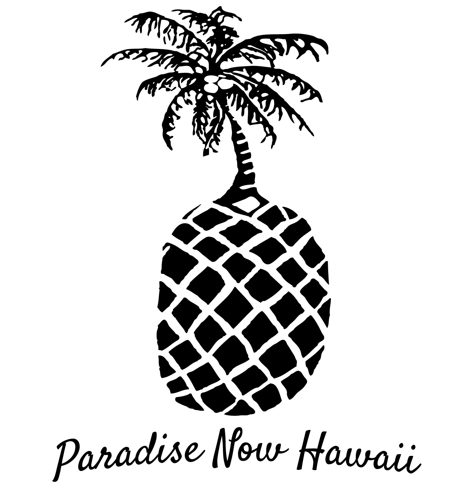 Paradise Now Hawaii