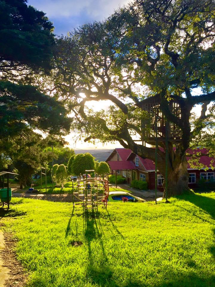 Sun shining down on Campamento Roblealto, Costa Rica.