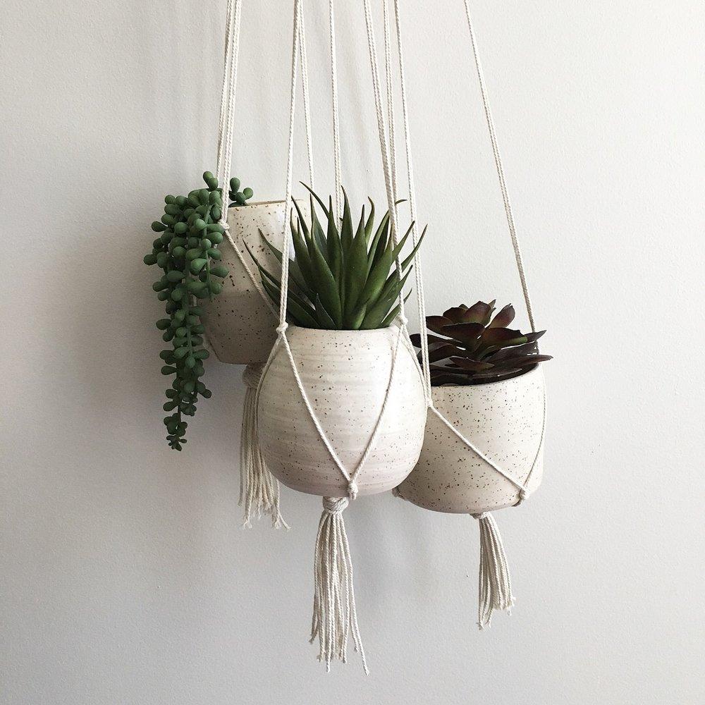 planters -