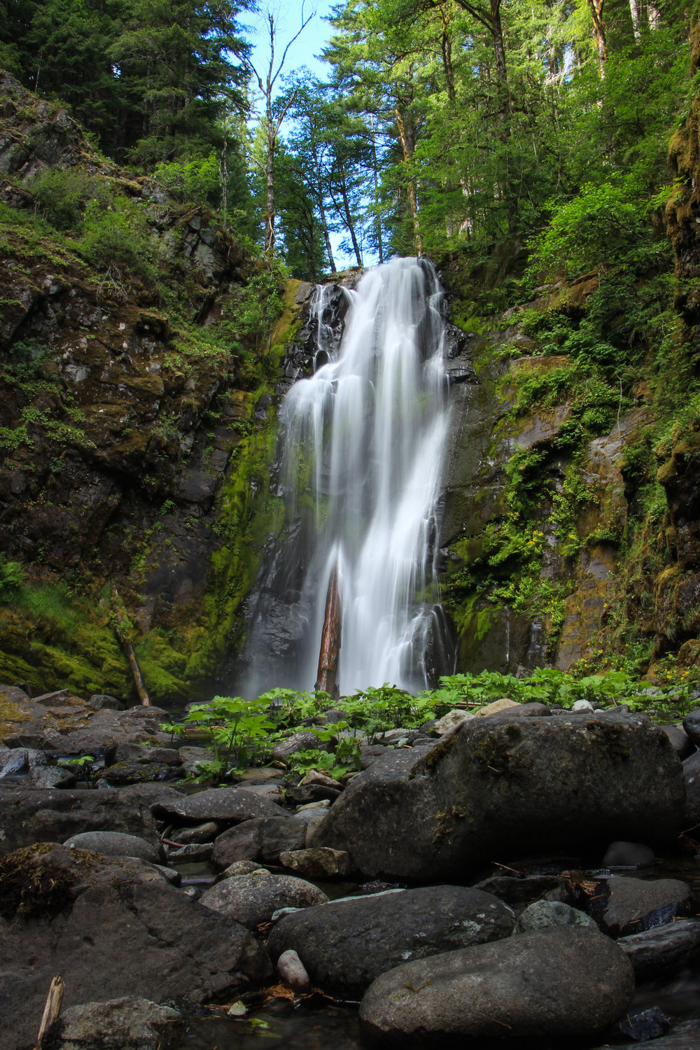 Chinook Falls, Washington State