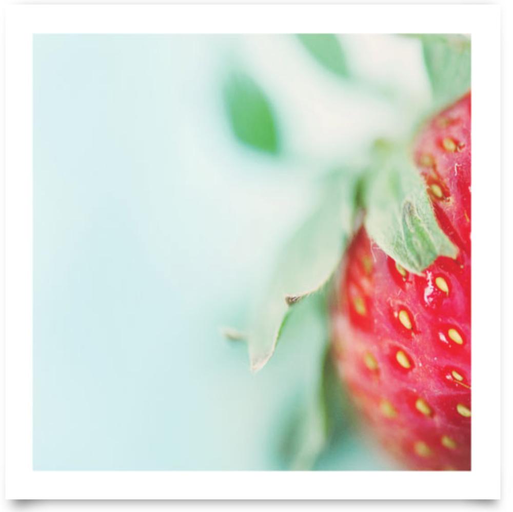 Beautiful Berry Up Close