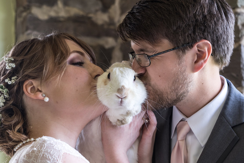 Bunny Rabbit as a pet with bride and groom at wedding in Buck Hill Falls PA. Smile Peace Love Photography.