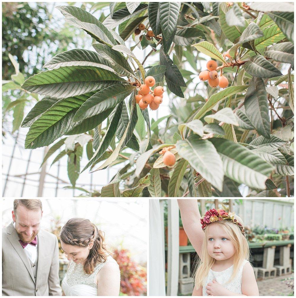 Buffalo Botanical gardens wedding - Buffalo NY Lass and Beau 9.jpg