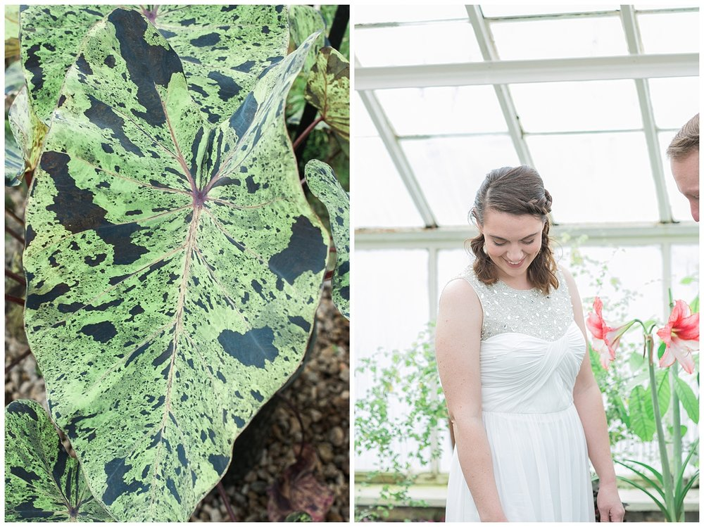 Buffalo Botanical gardens wedding - Buffalo NY Lass and Beau 15.jpg