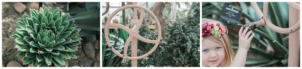 Buffalo Botanical gardens wedding - Buffalo NY Lass and Beau 55.jpg