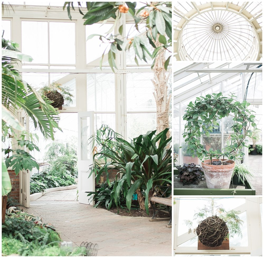 Buffalo Botanical gardens wedding - Buffalo NY Lass and Beau 107.jpg