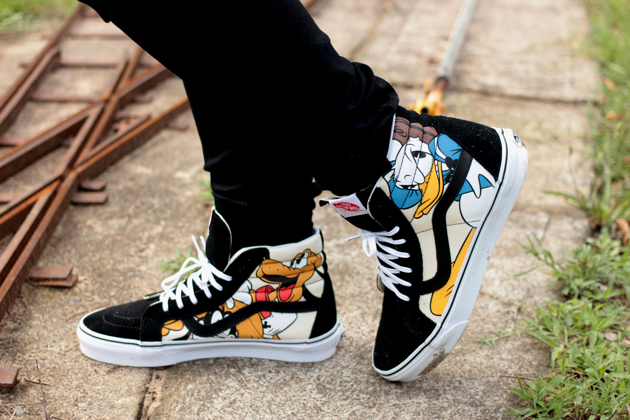 Disney Donald and Pluto Vans