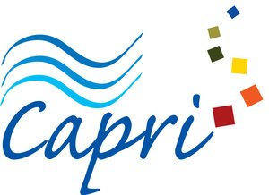Capri Marine Vinyl