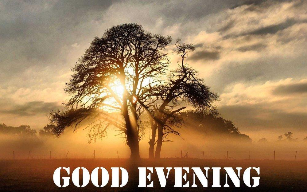 free-hd-sun-tree-3d-good-evening-wallpapers-download.jpg