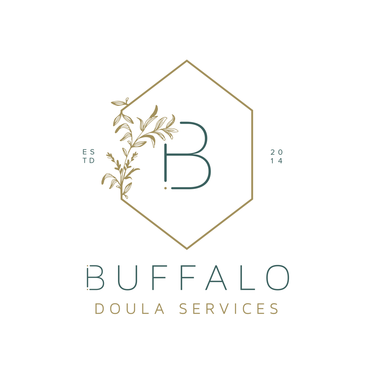 Buffalo Doula Services LLC