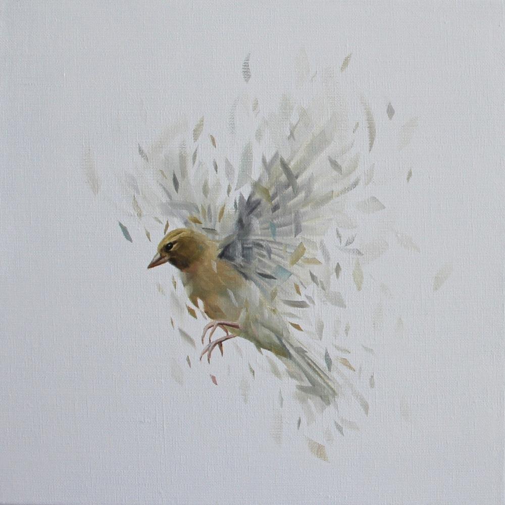 Bird Study 33