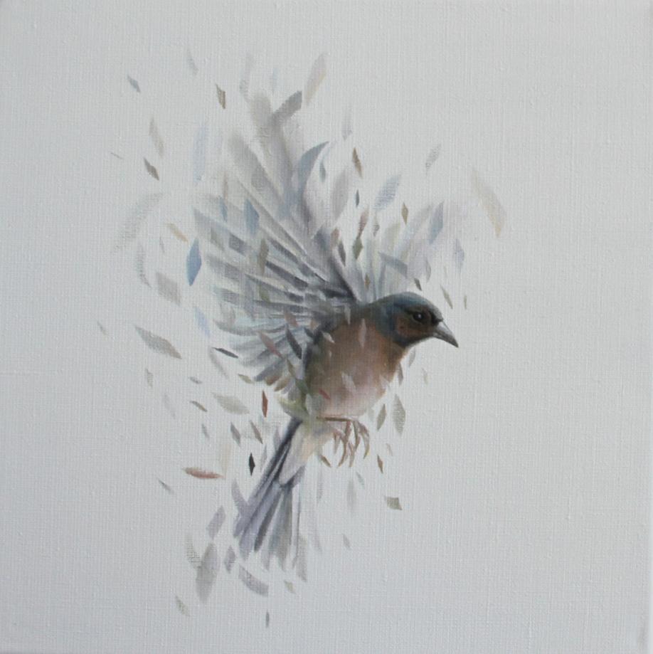 Bird Study 34