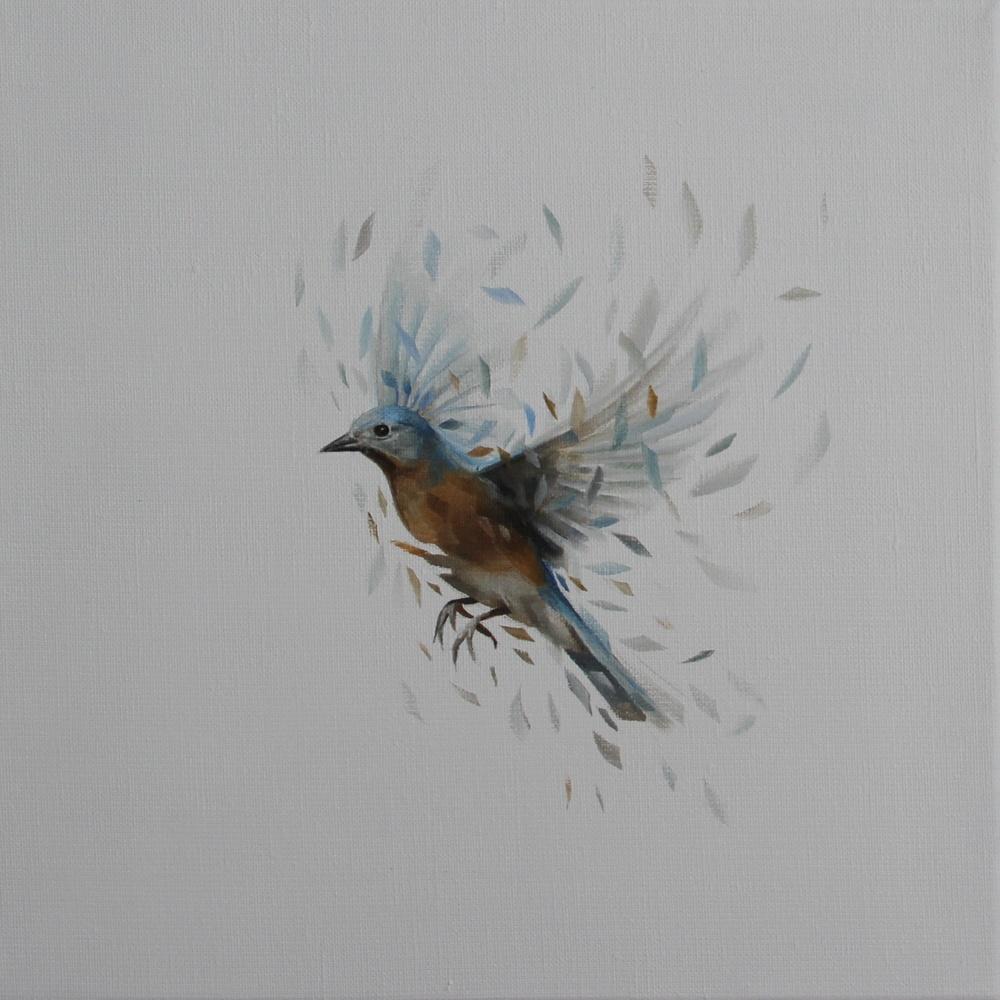Bird Study 35