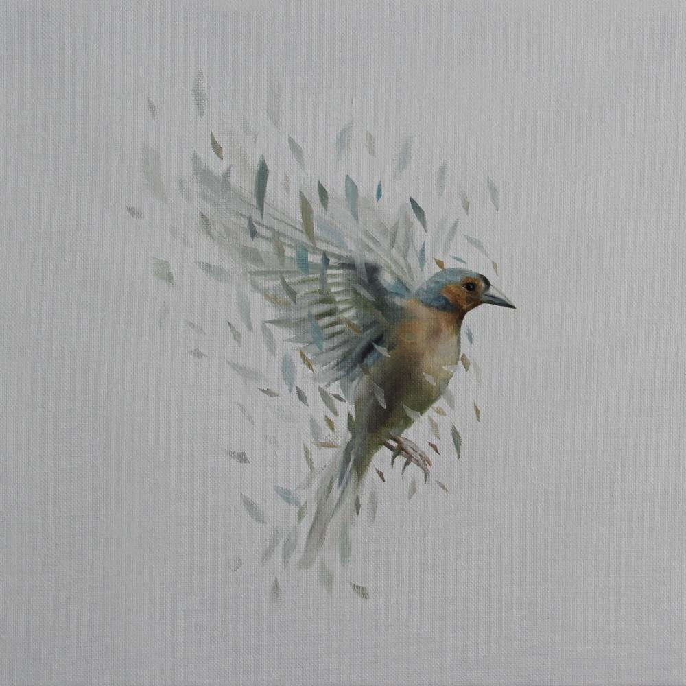 Bird Study 36