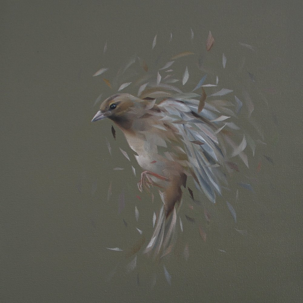 Bird Study No. 56