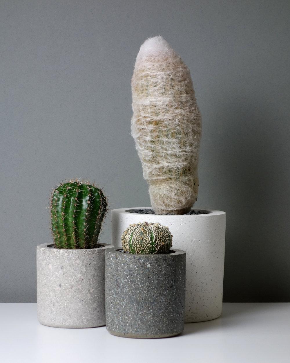 Concrete Conpot Planters