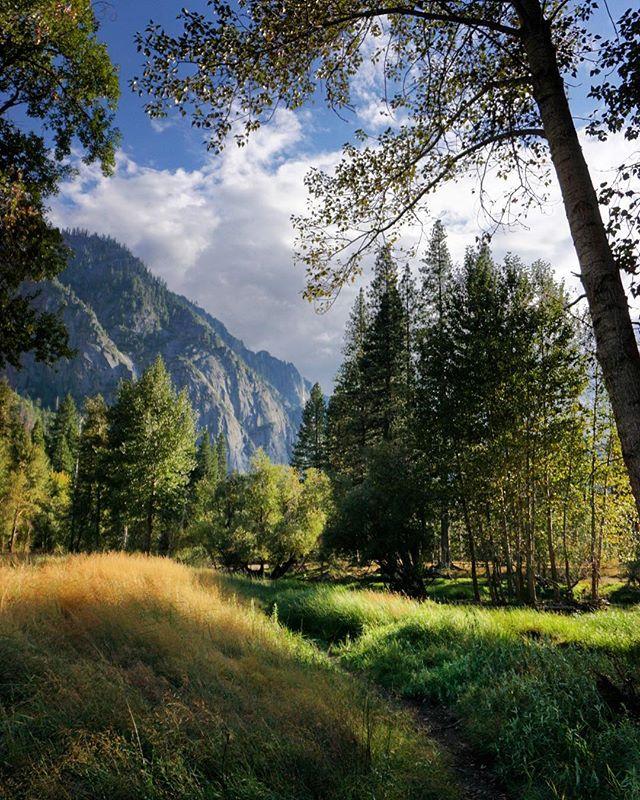 Early Fall in Yosemite Valley. Ready to go back already. I just got home. #yosemitevalley #california #findyourpark #nationalparks #sonya6000 #landscapephotography