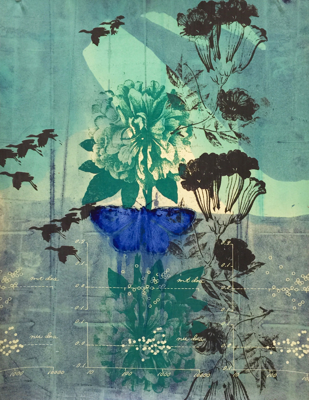 Palos Verdes Blue (with Peony)_150.jpg