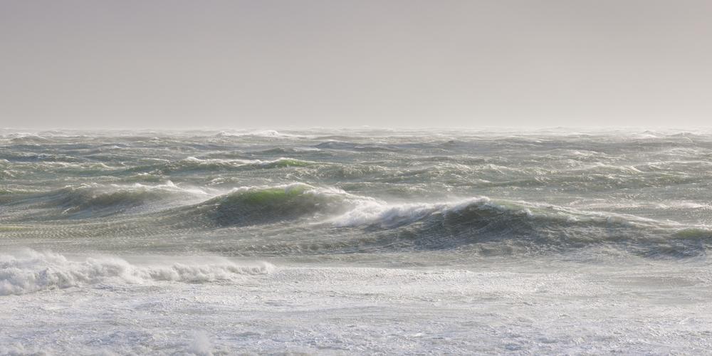 High Seas / February