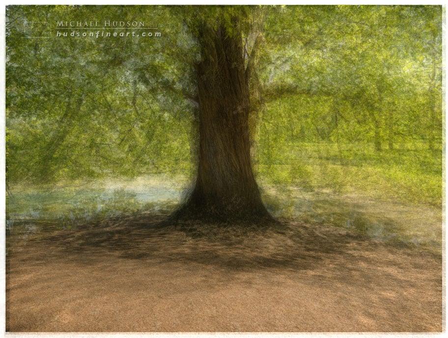 arby-tree-sept2015-4.jpg