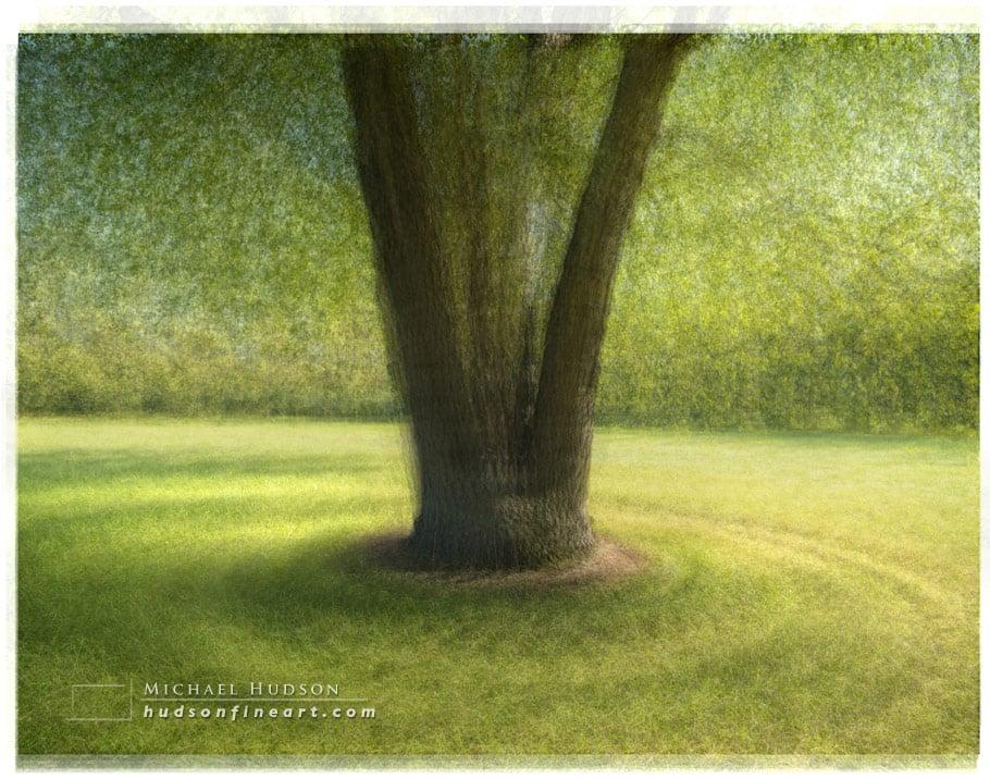 arby-tree-sept2015-8.jpg