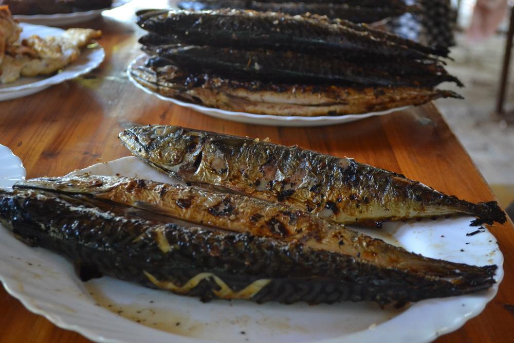 Eating fish in Croatia