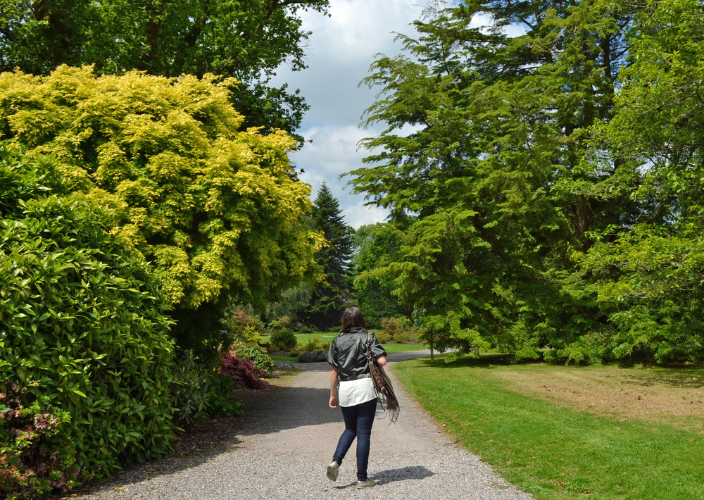 Blarney Castle Grounds, Cork, Ireland