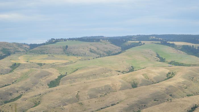 id hills