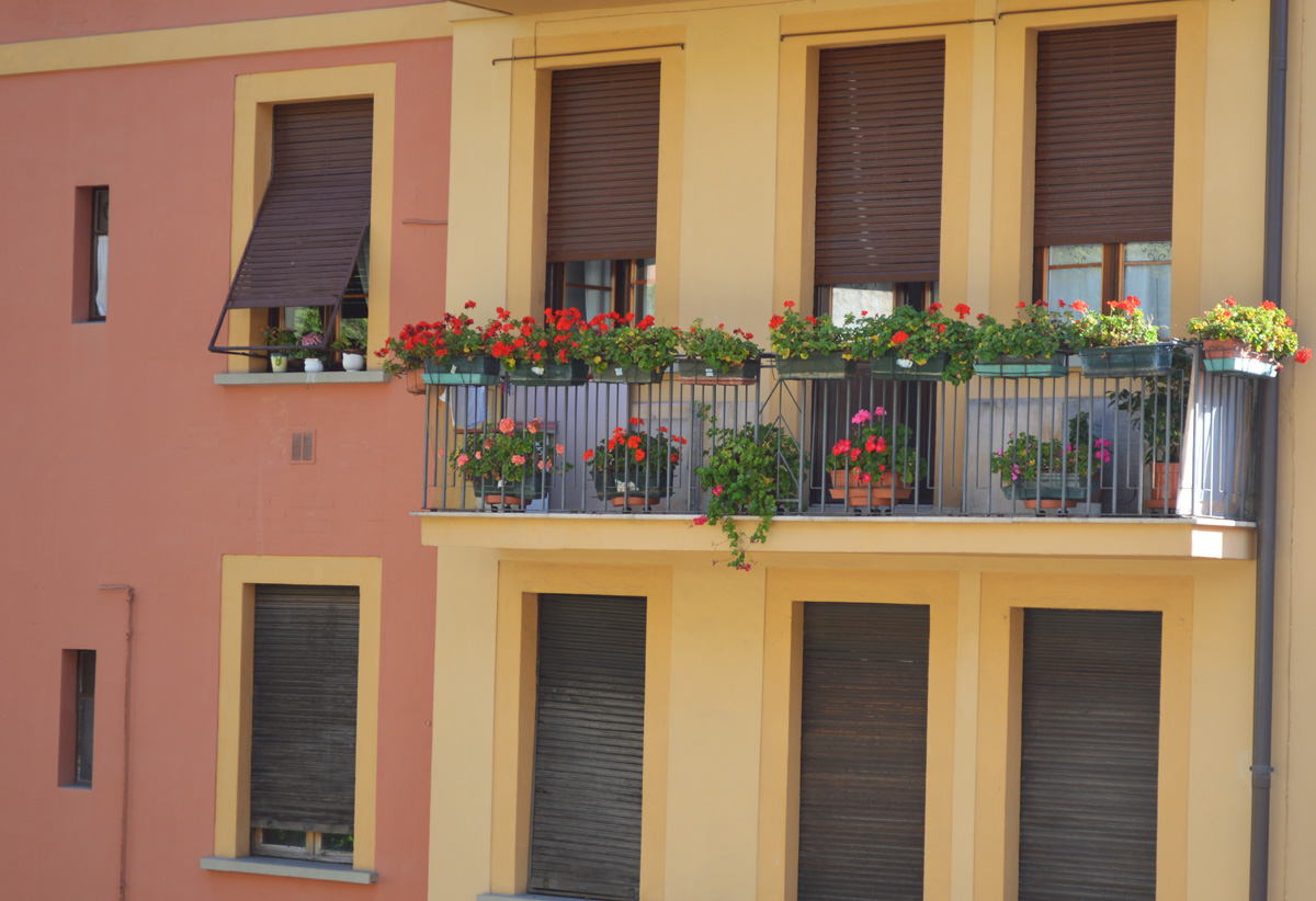Flower Window Boxes Perugia