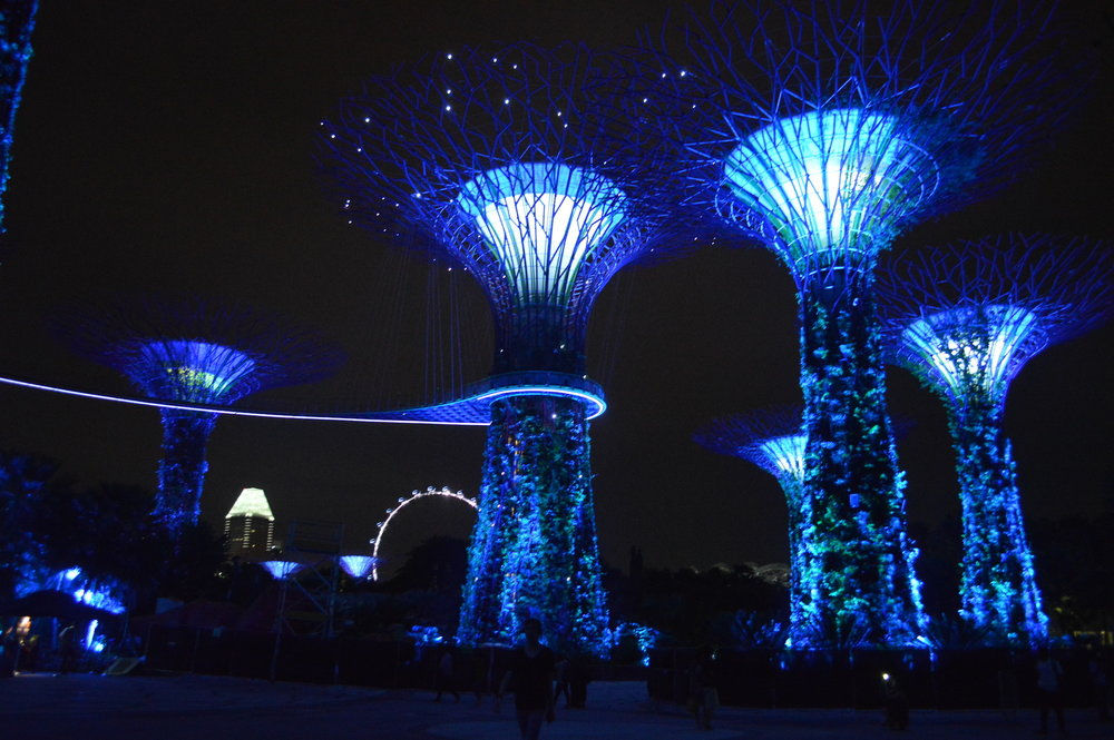 What to do on a one day layover in Singapore