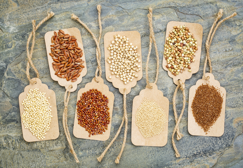 Grains Anatomy Breadsense