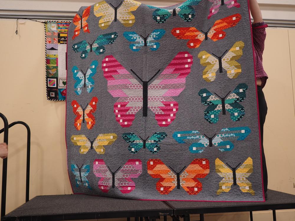 Lepidoptera    Elizabeth Hartman  @elizabethagh
