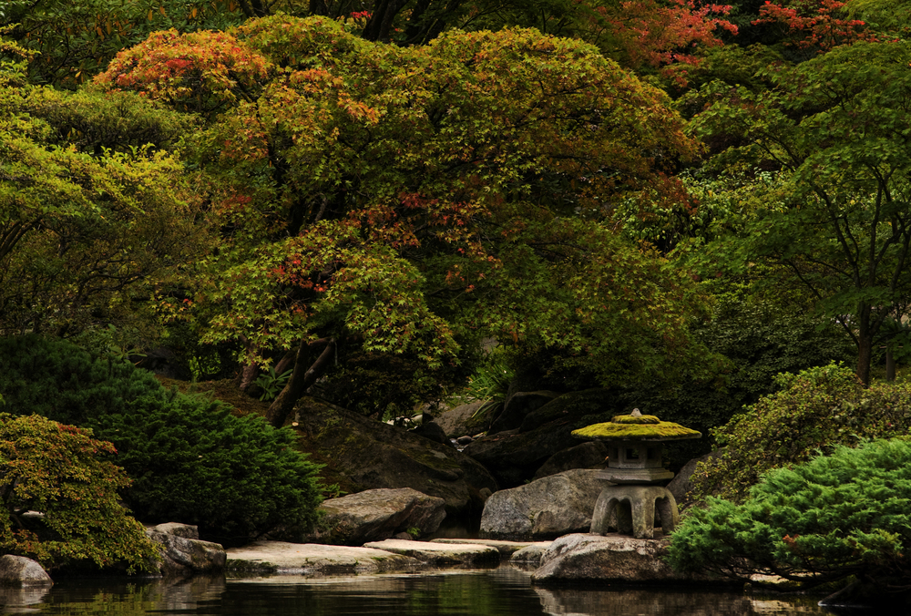 Inside the Japanese Garden.jpg